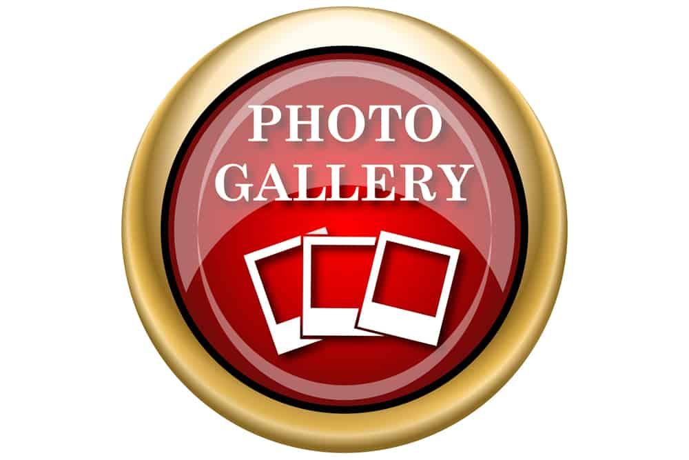 Salsamania Fotogalerie